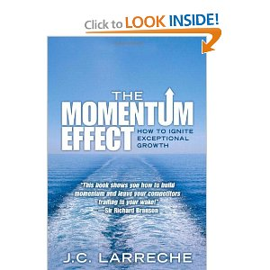 Momentum Effect (Used) Price: Rp 150.000