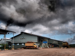 Pabrik Sawit